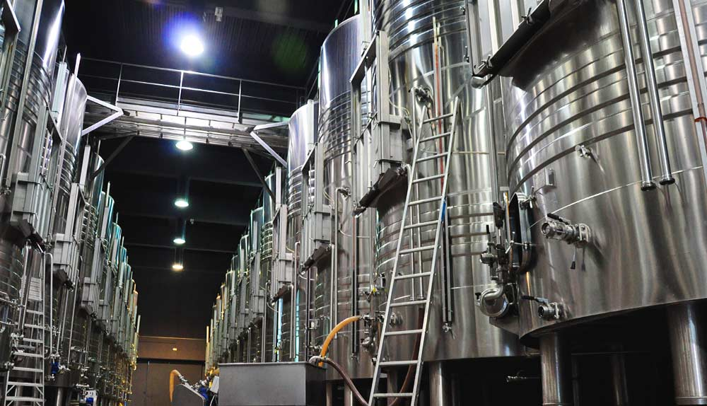 fermentacion para convertir el mosto en vino